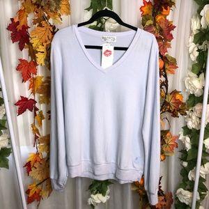 Wildfox Light Blue Sweatshirt